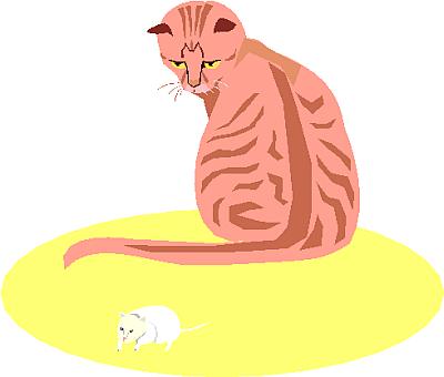 cat clipart 15