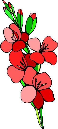 flower image 15