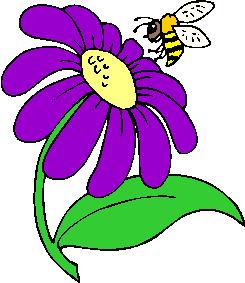 flower image 30