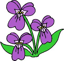 flower image 38