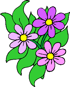 flower image 43