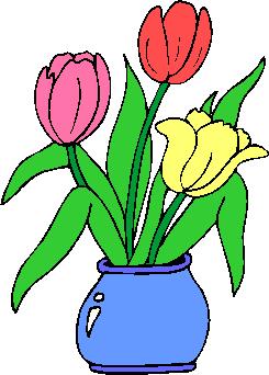 flower image 44