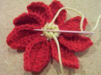 Christmas pointsettia flower center 2