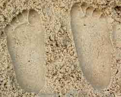 sand casts image 5