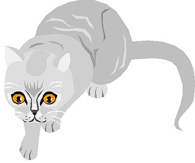 cat clipart 11