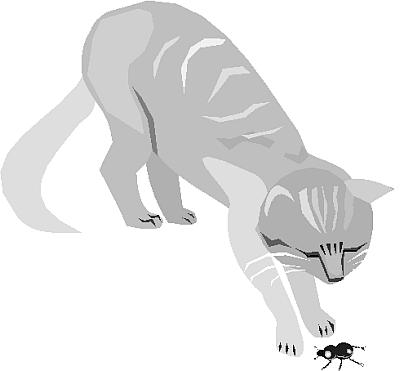 cat clipart 16