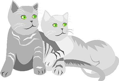 cat clipart 17