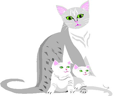 cat clipart 18