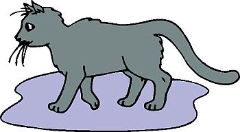cat clipart 30