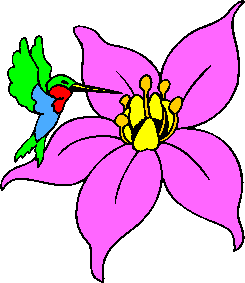 flower image 35