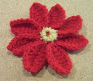 all petals of Christmas pointsettia flower