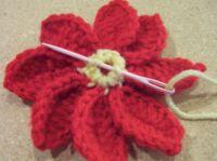 Christmas pointsettia flower center 1